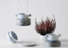 porcelain_tanya_klimenko_4naturalist_photo_crispy_point_hr