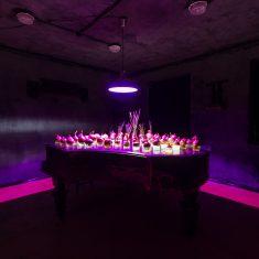 «Самый сумасшедший (MAD) проект»; бюро «Витрувий и сыновья» + «АРХАТАКА»